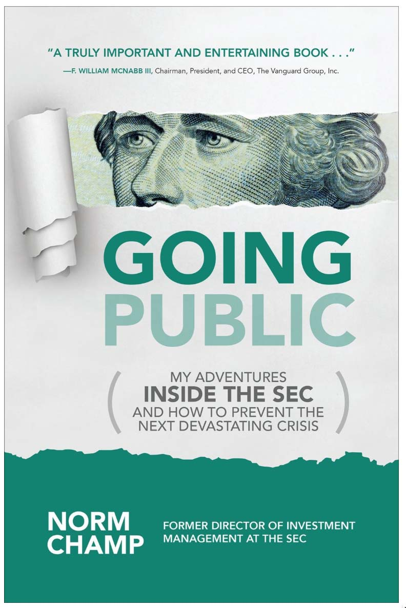 Going Public-My Adventures Inside The SEC And How To Prevent The Next Devastating Crisis